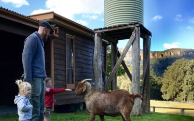 Farmstays within 3.5 hours of Sydney